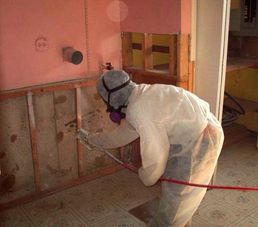 Mold Remediation Experts in Indianapolis