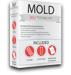 NEW-Small-Self-Mold-Testing-Box