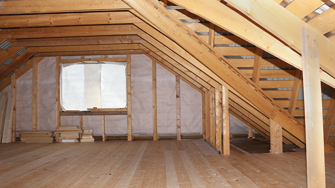 How Does this Attic Mold Party Start? & Attic Mold: There Could be More than Insulation in your Attic!